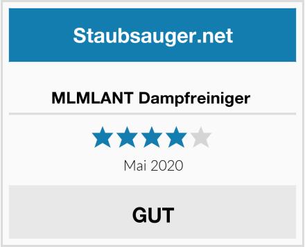 No Name MLMLANT Dampfreiniger  Test
